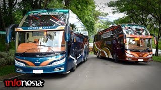 Video AWALNYA DIKIRA BUS BIASA..! Inilah 4 Sleeper Bus Di Indonesia MP3, 3GP, MP4, WEBM, AVI, FLV Februari 2019