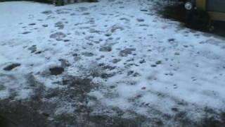 This is real snow, click high quality below video
