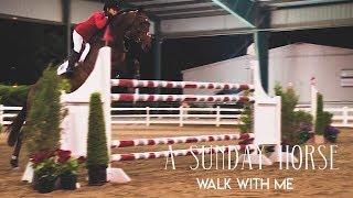 A Sunday Horse: Walk with me, by EditingJanneJacobs