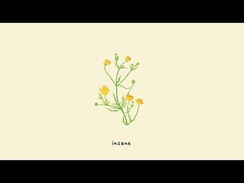 Gnash - insane (lyric video)