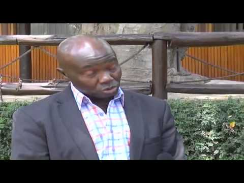 Tackling legislation & revenue sharing in Kenya's mining sector
