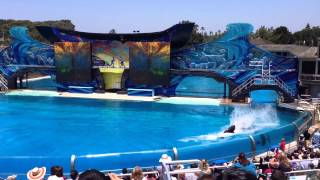 Sea World in San Diego