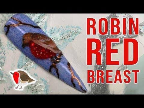 Nail art designs - Robin Red Breast Winter Nail Art Design
