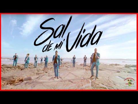 Sal de mi vida - La Original Banda El Limon  - Thumbnail