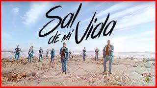 Sal de Mi Vida - La Original Banda El Limón (Video Oficial) - YouTube
