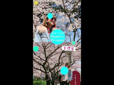 2018盛世公主號郵輪首航 ❤️日本vs 韓國賞櫻秘境一次滿足❤️巧遇韓國天團EXO也太嗨(≧∇≦)