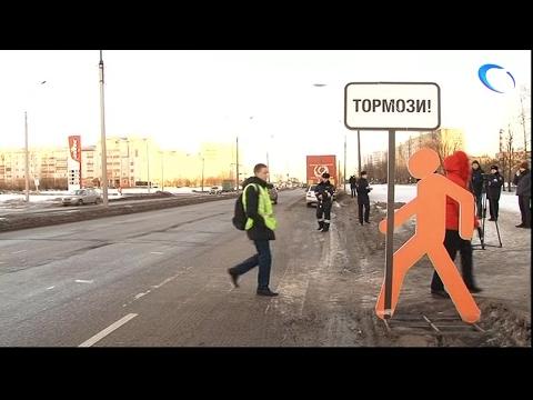 ГИБДД проводит серию рейдов под девизом «Водитель, притормози»