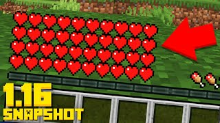 This 1.16 Snapshot just Changed Everything