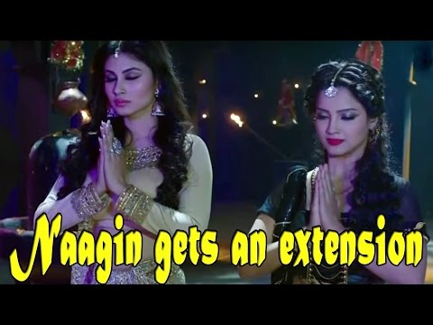 Naagin gets an extension