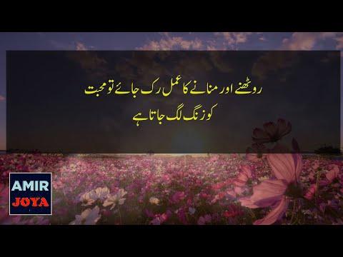 Life quotes - Best Urdu Quotes  Ameezing urdu qoutations  quotations about life