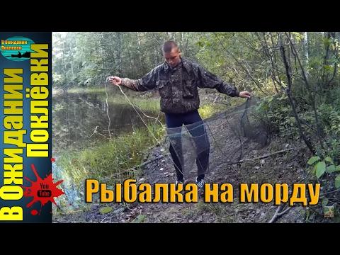 рыбалка весной самоловами