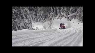 10. Ski Doo 2014 Snowmobile Rotax Ace Engine
