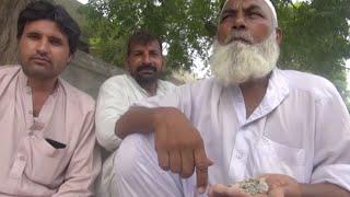 Деликатес по-пакистански