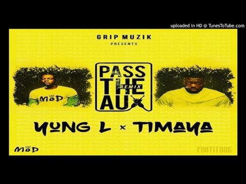 YunG-L-Pass-The-Aux-Remix-ft-Timaya (2016 MUSIC)