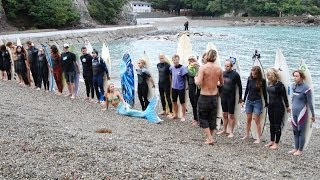 Taiji Japan  city photos gallery : Surfers, Celebrities & mermaid paddle out defend dolphins in Taiji Japan