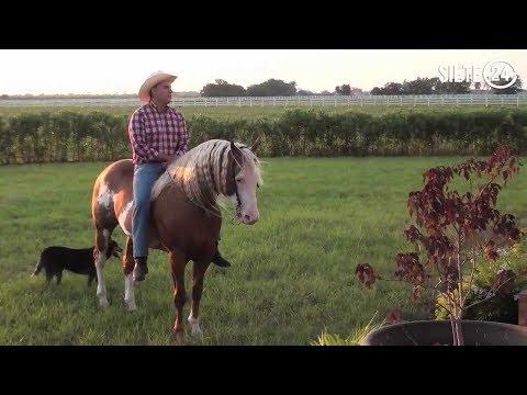 Los caballos millonarios del gobernador Sandoval