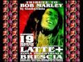 Bob Marley Tribute by GianburRasta