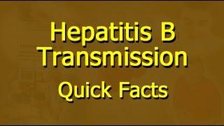 Hepatitis B - Transmission