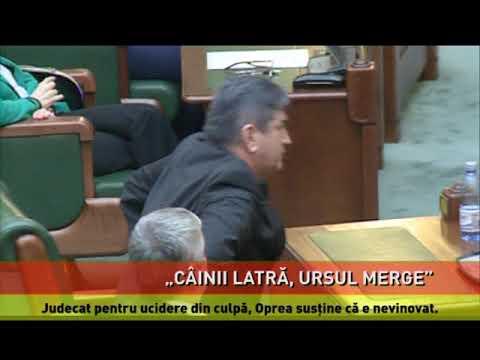Judecat pentru ucidere din culpă, Gabriel Oprea pregătește UNPR pentru europarlamentare