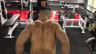 Tips For Back Training