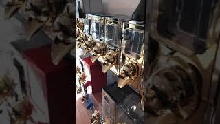 Kahve silosu