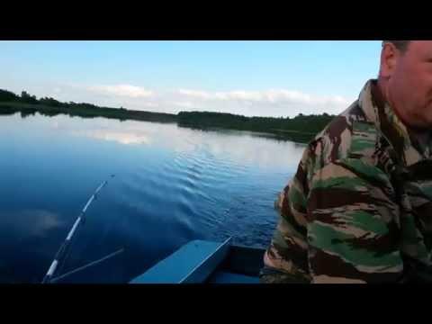 рыбалка на реке кубена видео