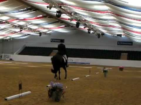 Arena UK - Julie Frizzell