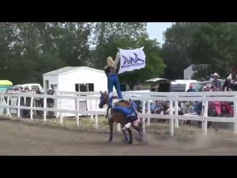 J & S Trick Riding Team 2014