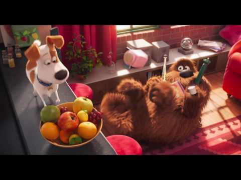 THE SECRET LIFE OF PETS All Movie Clips