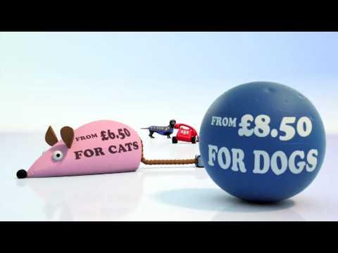 Direct Line Pet Insurance 25th Birthday - Jan 2010