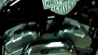 10. Harley Davidson stock Sportster 883 Low 2006 (carb.)