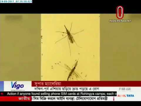 Alarm as super malaria spreads in South East Asia(24-09-2017)