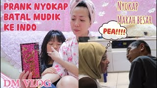 Video PRANK NYOKAP BATAL MUDIK KE INDONESIA SAMPAI DIKATAIN PEA|NYOKAP MARAH BESAR MP3, 3GP, MP4, WEBM, AVI, FLV Juli 2019