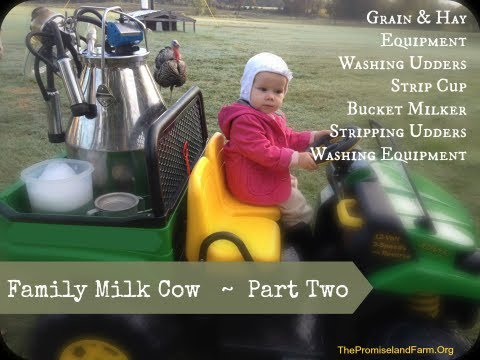 Family Milk Cow {Part Two}