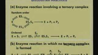Lecture - 8 Enzymes 2