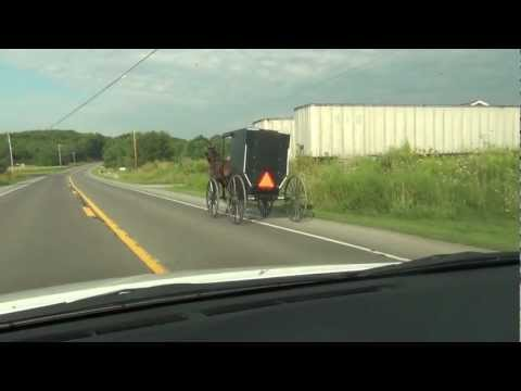 AMISH MAN RIDING IN BUGGY PULLED BY A HORSE IN PENNSYLVANIA