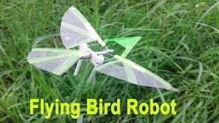 How to Make A Robotic Bird at Home | Robotic Bird Making Idea
