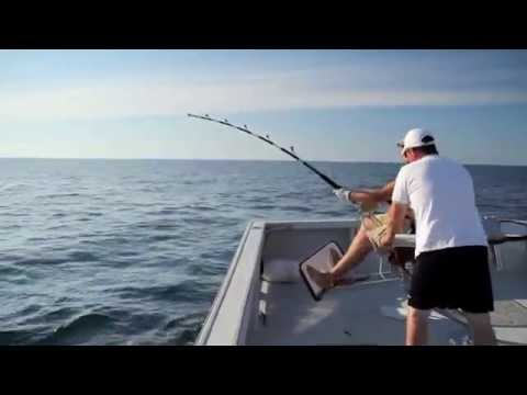 BIG GAME FISHING - Giant Bluefin Tuna Fishing with Dawn Treader Tuna Charters - Experience the World's best Giant Bluefin Tuna Fishing! Minutes from Nova Scotia's Cabot Trail, ...