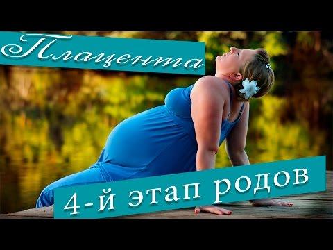 Плацента. Плацента при беременности. 4-й Этап родов.