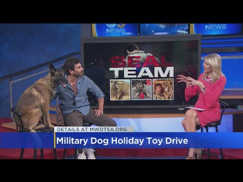 'SEAL Team' Actor Justin Melnick Talks Military Dog Toy Drive