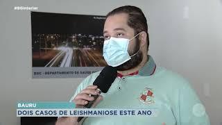 Bauru registra primeira morte por leishmaniose em 2021