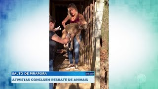 Ativistas concluem resgate de animais em Salto de Pirapora