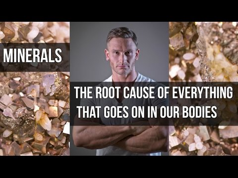 The Truth about Magnesium & Copper: Food Industry Secrets- Thomas DeLauer (видео)