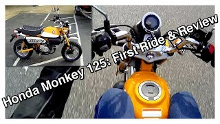 1. 2019 Honda Monkey 125 - First Ride & Review
