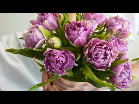5 Tips about Purple Flowers | Wedding Flowers