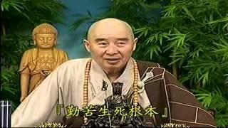 Kinh Vô Luợng Thọ (1998) tập 87&88 - Pháp sư Tịnh Không