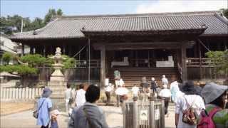 兵庫県の初夏に行きたいおすすめの観光地のご紹介