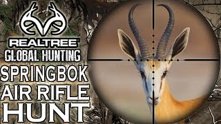 Springbok South Africa  city pictures gallery : Benjamin Bulldog Big Bore Air Rifle Hunting in South Africa: Springbok