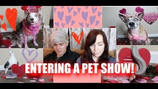 ENTERING OUR DOGS IN A PET SHOW!   w/ Tyler Rugge by Maddie Smith