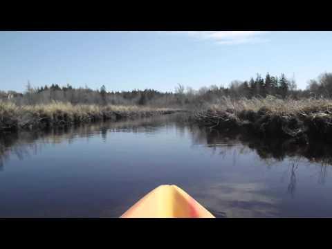 Flatwater Kayaking on Meteghan River, Nova Scotia